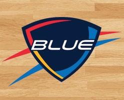 blue logo cea.jpg
